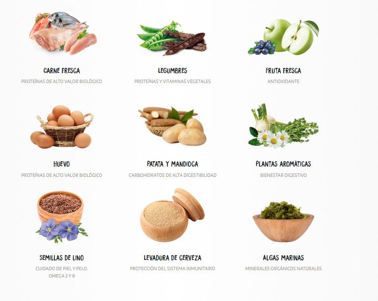 comida chow chow